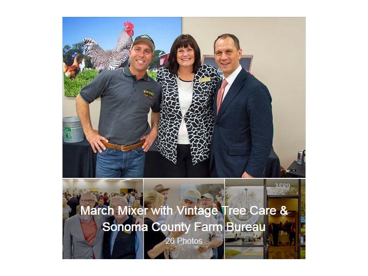 SCEA Member, Vintage Tree Care, Hosted a Recent Mixer for the Santa Rosa Metro Chamber